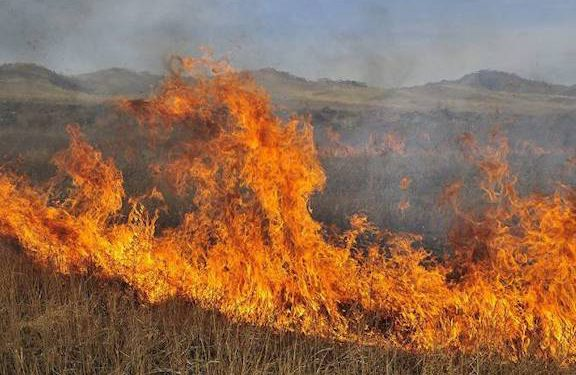 Azerbaijani Forces Start Fires, Continue Shooting in Yeraskh