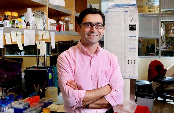 Armenian Physician Shares 2021 Nobel Prize in Medicine